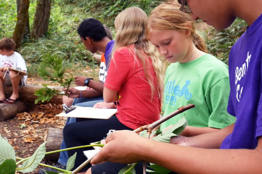 4-H Learning Series